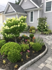 Jersey Shore Landscape Design